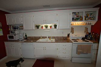 Tampa home renovation kitchen remodeling outdoor - Kitchen cabinets brandon fl ...